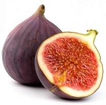 rp_can-dogs-eat-figs.jpg