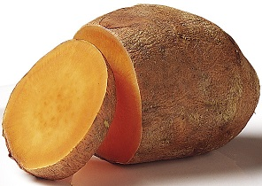 rp_can-dogs-eat-sweet-potatoes.jpg