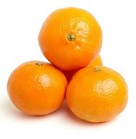 Can Dogs Eat Oranges Or Clementines