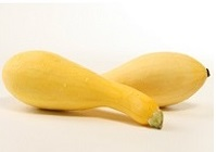 rp_can-dogs-eat-squash.jpg