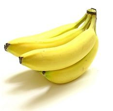 Would it be okay for a dog to have one of these delicious bananas? Yes, but but only one or two.