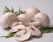 rp_can-dogs-eat-mushrooms-1-champignons.jpg