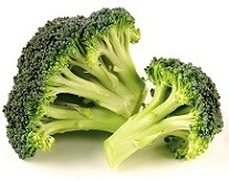"""Broccoli """"the flowering top of a cabbage"""" is only okay for dogs to eat in small amounts."""