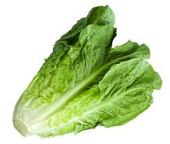 Romaine lettuce is considered to be the most nutritious lettuce option there is, it's definitely something to share with your pooch.